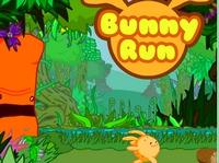 Play Bunny Run