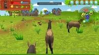 Play Horse Simulator 3D