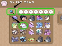 Play Prodigy All Pets