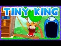 Play Tiny King